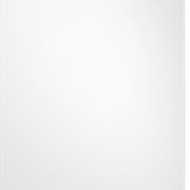 Samsung BRR20R121WW/EF