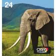 Epson Multipack 6-colours 24 EasyMail